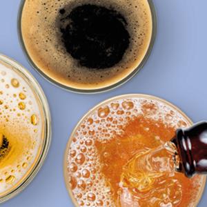 Cervecería y Fermentación